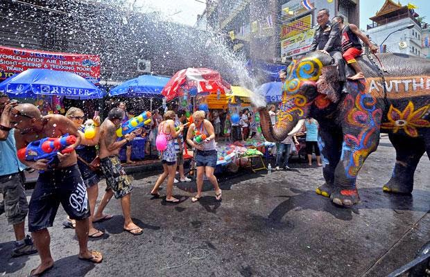 Elephent Songkran