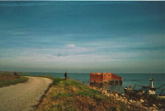 Il blog di santo stefano sul delta for Capanno invisibile