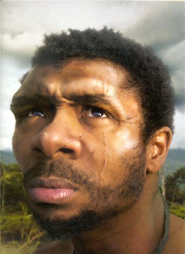 Asian homo erectus facial reconstruction