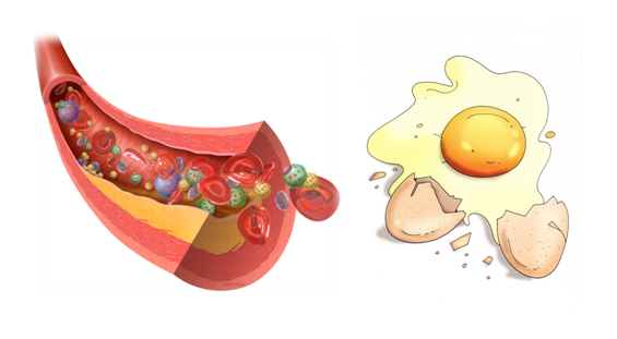 Nutrición, Dietética y Salud: El mito del huevo y el ... American Heart Association