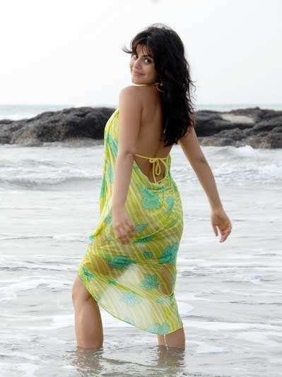 bollywood shehnaz bikini glamour  images