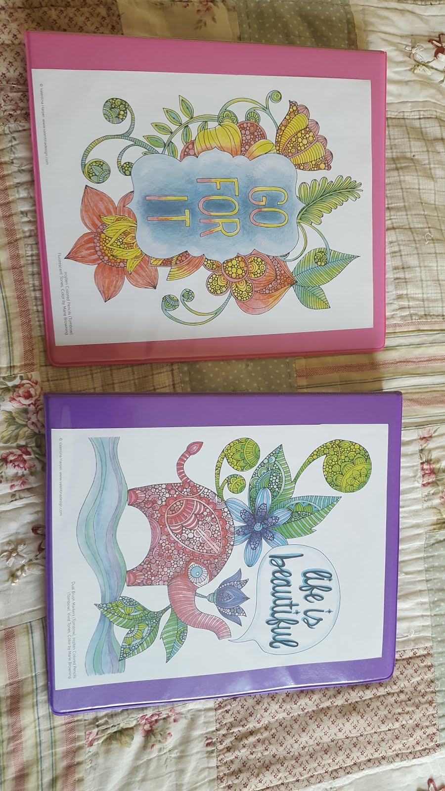 Homeschool Organizers I've created