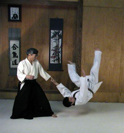aikido 3d crack