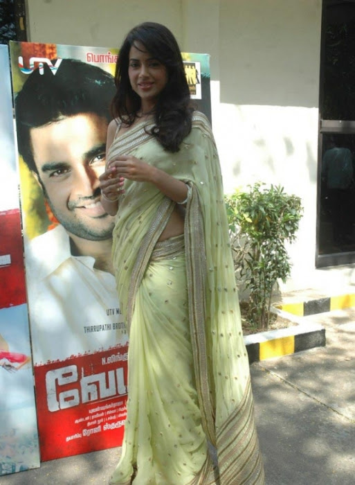 sameera reddy saree in vettai movie audio release glamour  images