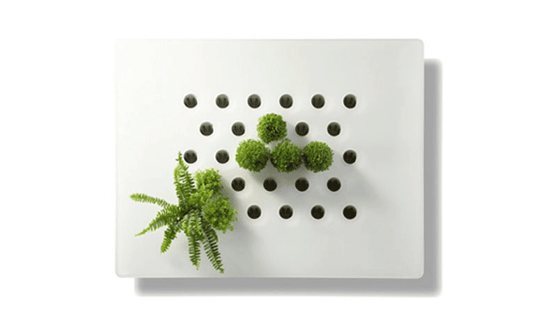 Crea tu jard n vertical con vegetal screen diva de for Crea tu jardin