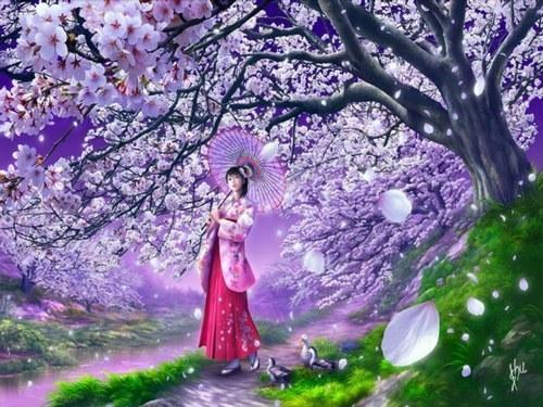 Realidades Oníricas.: Hanami: La Extremada Belleza De Los Cerezos ...