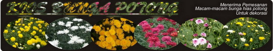 Kios Bunga Potong