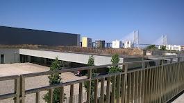 Novas Instalações - Moscavide