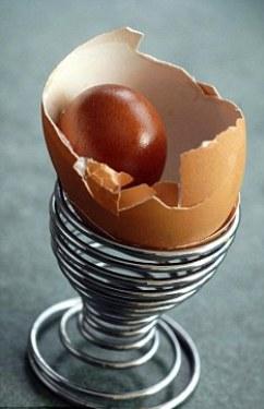 Ada Telur di Dalam Telur