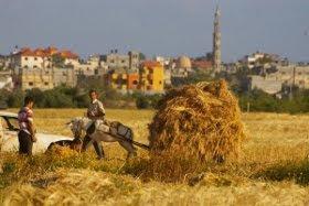 ISRAEL RECIBE CON DISPAROS A LA DELEGACIÓN ESPAÑOLA EN GAZA.