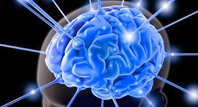 Ramuan Untuk Membuat Otak Brilian