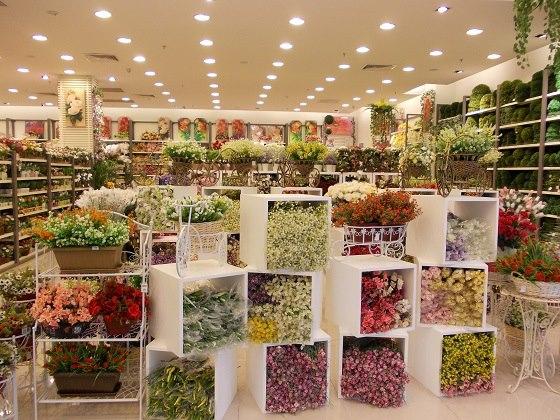 Adlyn Journey Shopping Di Kaison