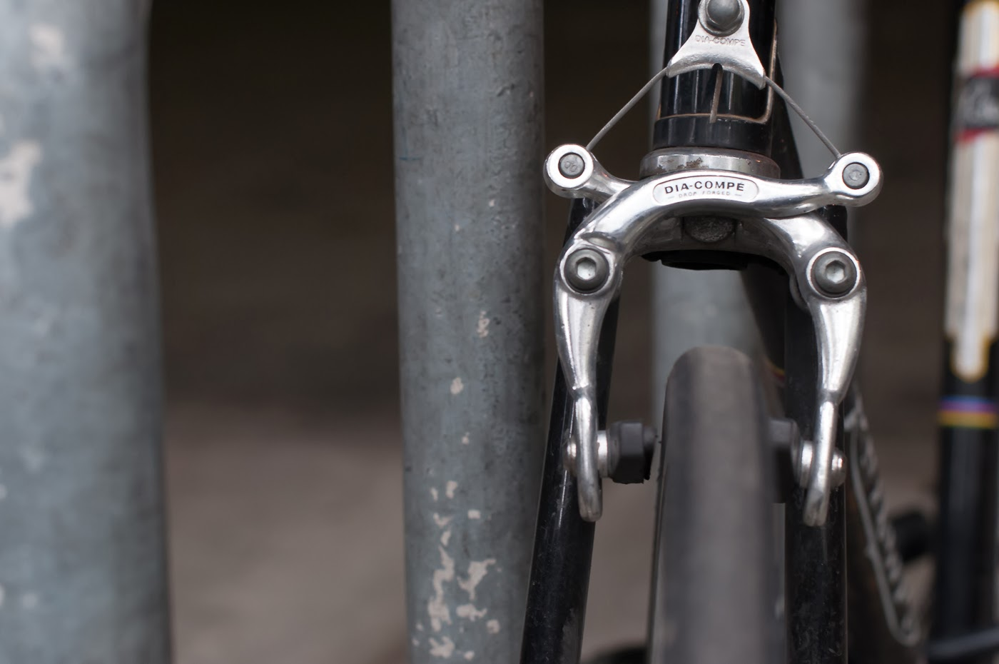 single speed, bike, bicycle, tim macauley, the biketorialist, melbourne, road bike, conversion,  custom, phillips, vintage