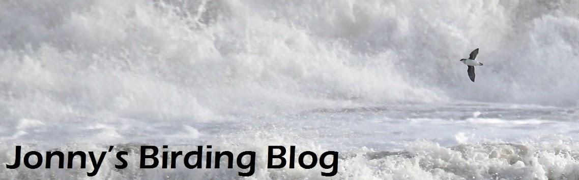 Jonny's Birding Blog