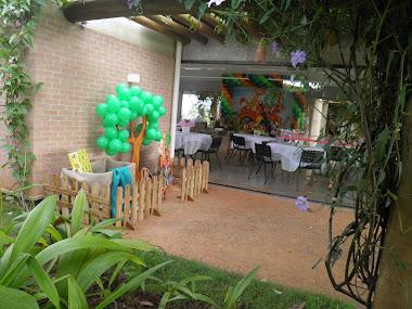 Festa Safari - Visão Geral do Salão