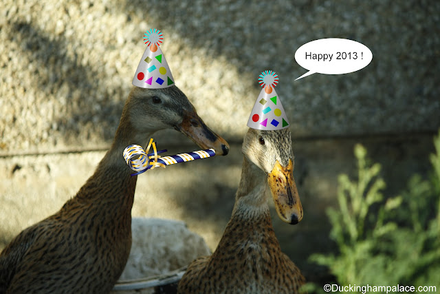 "Princess Lily and Elsie wearing party hats arrive back at the palace and proclaim ""Happy 2013!"" !"