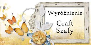 Wyróżnienie w Craft Szafie