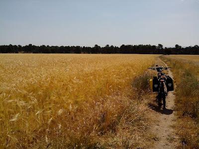 campos-de-castilla-camino-de-santiago-de-madrid-rutas-en-mtb