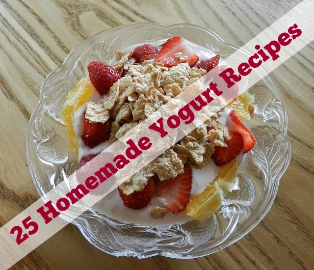 Homemade Yogurt Recipes | Becky Cooks Lightly