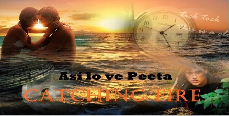 Así lo ve Peeta en Los Juegos del Hambre