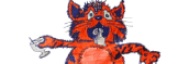 Pet de Kat Krewe