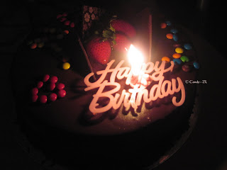 photos_birthday_cake_14.jpg (320×240)
