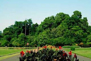Kebun Raya Bogor....!!!