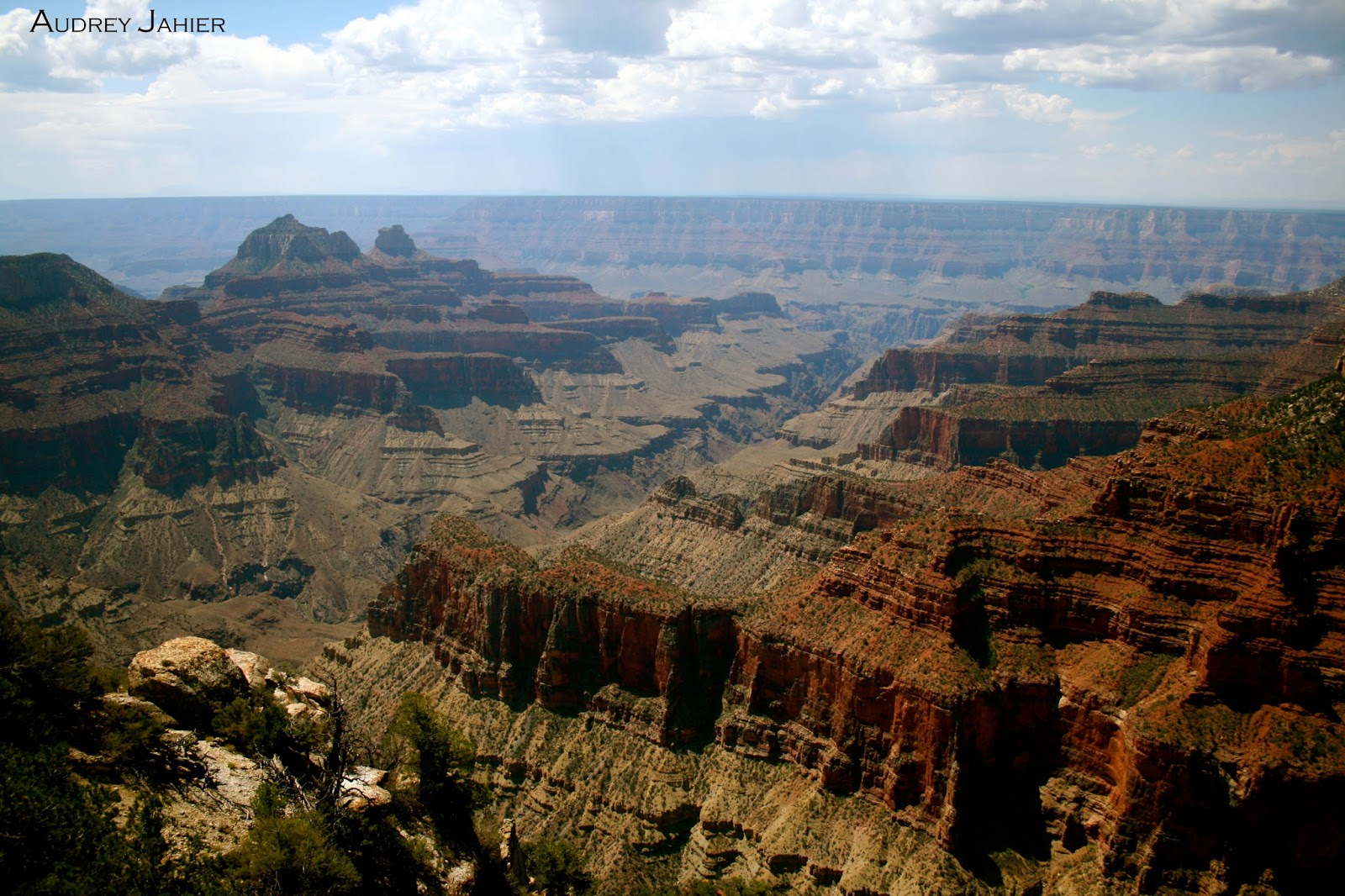 grand canyon-north rim-usa
