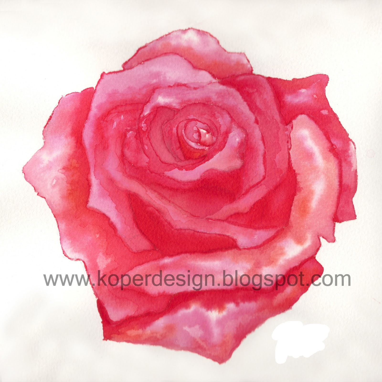 Koper design dise o ilustraci n rosa for Koper design