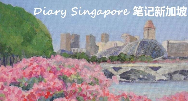 Diary Singapore  笔记新加坡