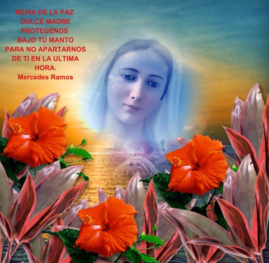 NOVENA A LA VIRGEN MARÍA EN DISTINTAS ADVOCACIONES