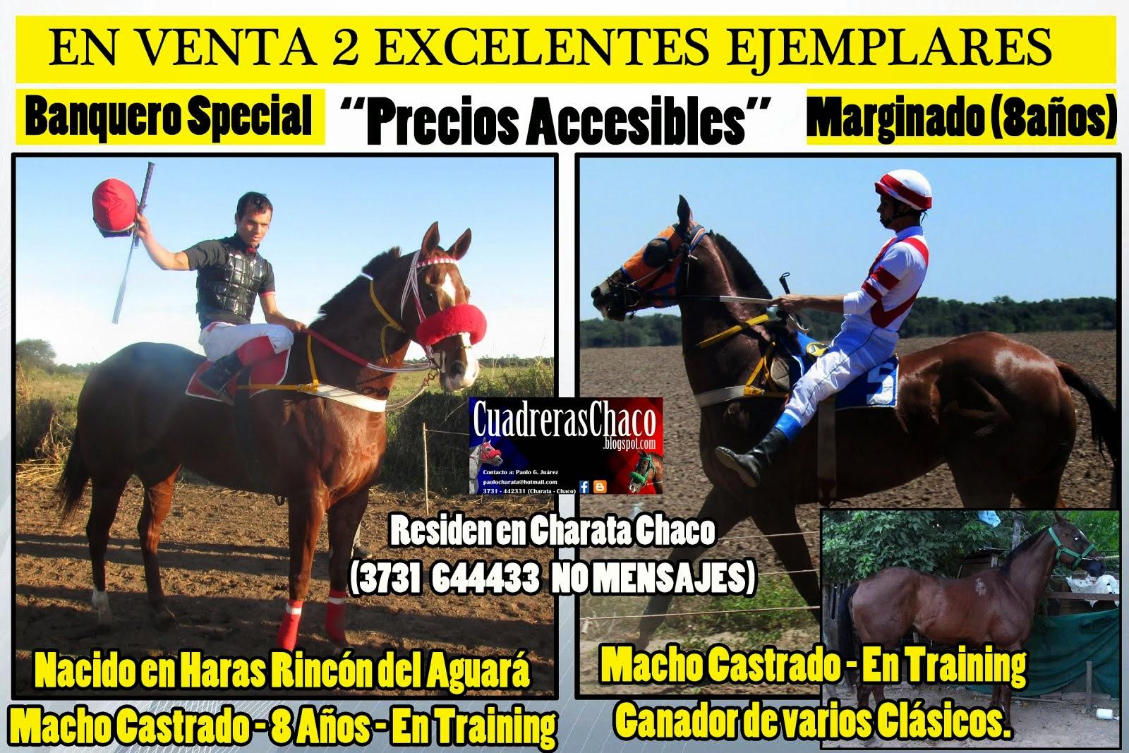 VENTA MARGINADO Y BANQUERO 15-1-15