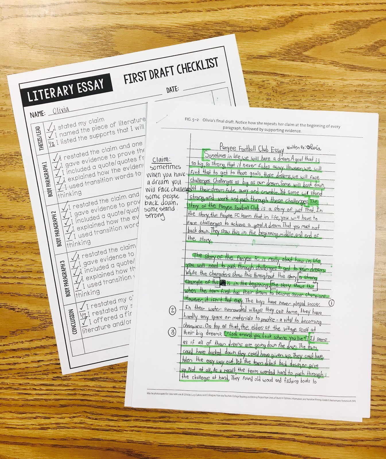 Literary analysis essay 5th grade