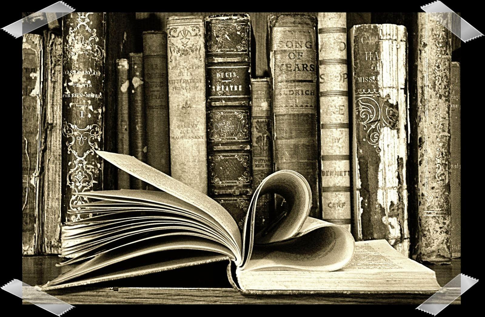 Como acceder a los libros
