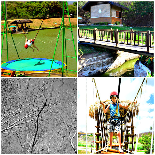 https://goo.gl/photos/jtobLwySoELPiKERA