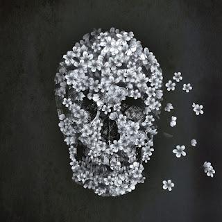 skull and flower - خلفيات سوداء