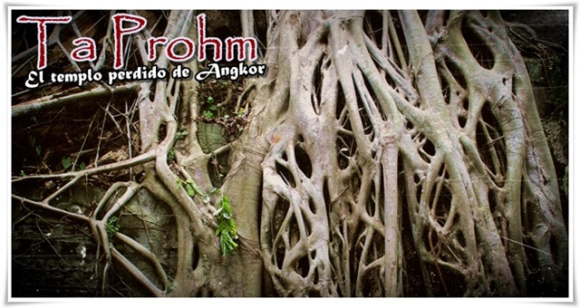 Ta-Prohm-Templos-de-Angkor