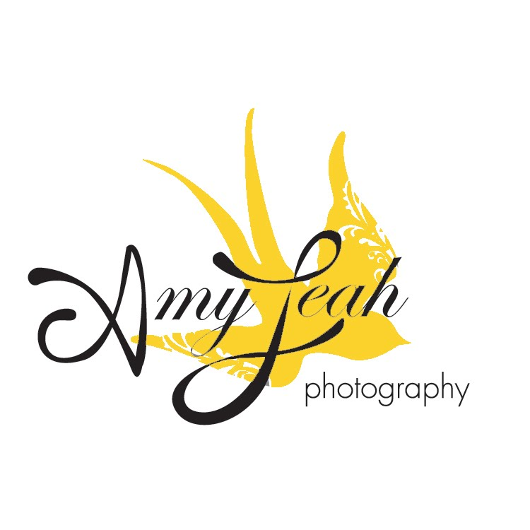 Amy Leah Photography