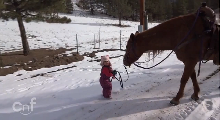 Father Films His 2 Year Old Daughter Taking Their Horse