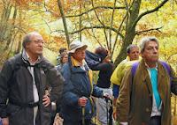 2003, bosque de Muniellos