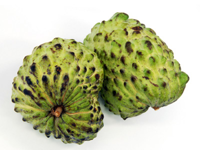 how to prepare soursop leaves for cancer