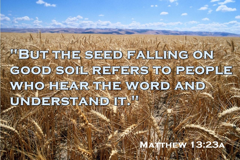 Image result for Matthew 13
