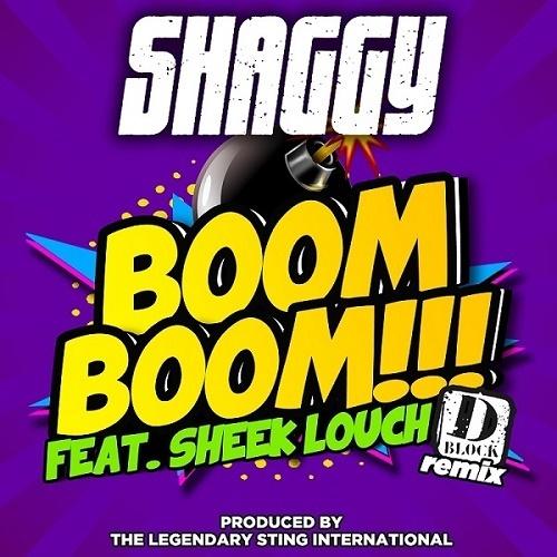 Shaggy ft. Sheek Louch – Boom Boom (Remix)