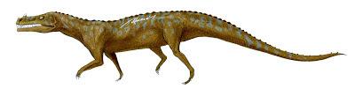 Decuriasuchus