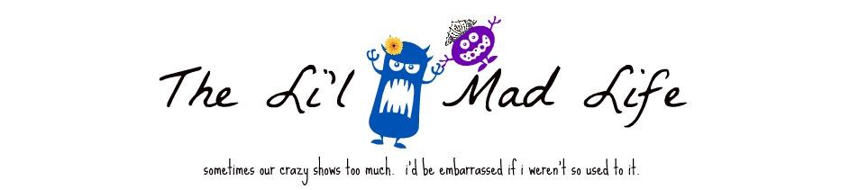 the li'l mad life