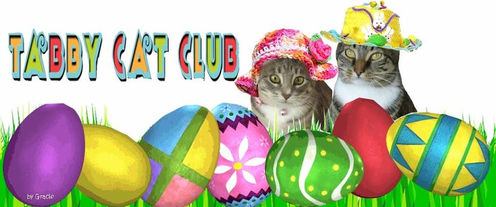 Tabby Cat Club