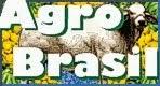 AgroBrasil - @gricultura Brasileira Online