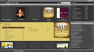 MusicBee - Grizzlyaudio