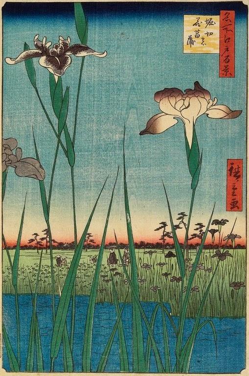Hiroshige Giardino degli iris