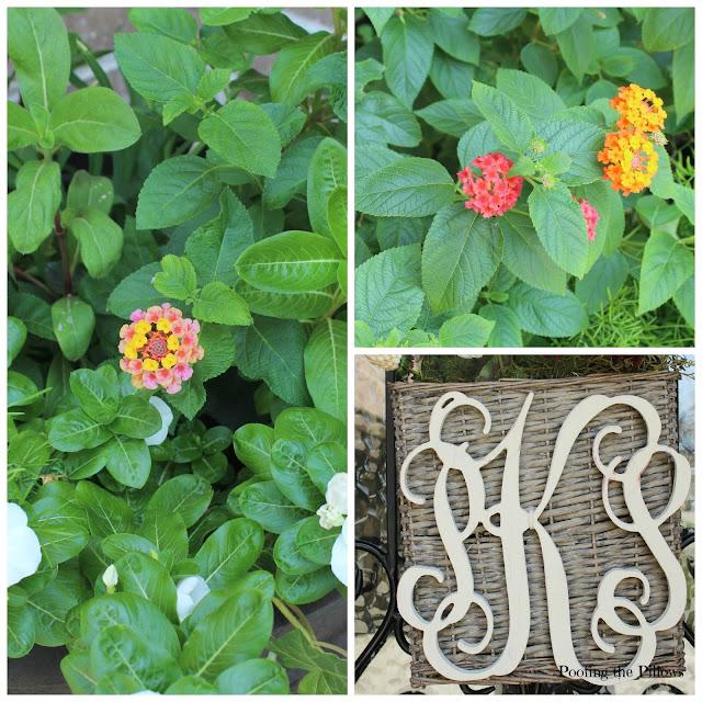 monogrammed door basket, lantana, late summer flowers